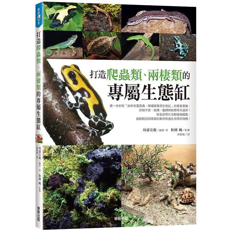 打造爬蟲類、兩棲類的專屬生態缸