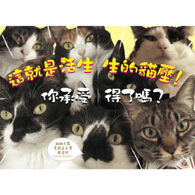 貓奴的我不推薦養貓の11個理由 完全揭曉貓咪真面目!