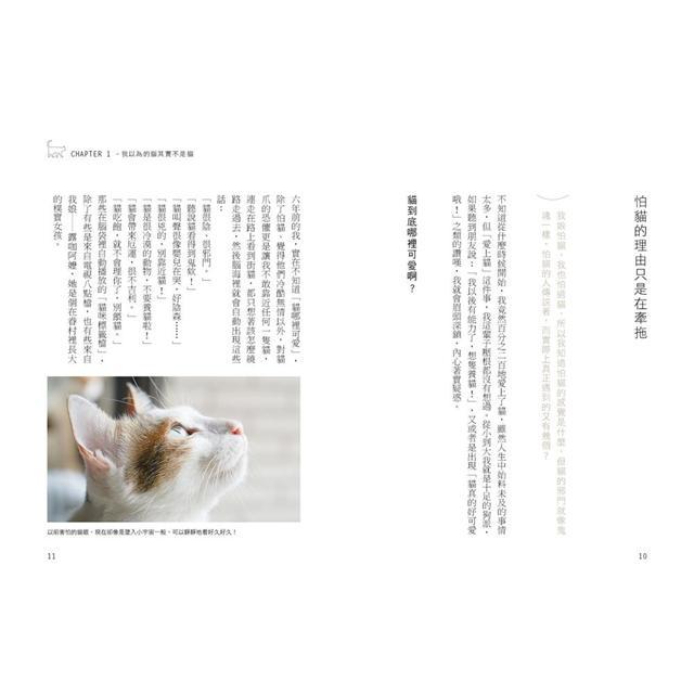 我的貓系生活:有貓的日常,讓我們更懂得愛