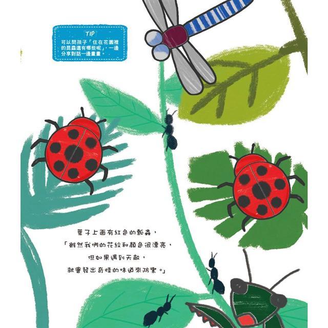 親子塗鴉王:簡單畫畫+藝術遊戲超好玩!(附動物吊飾圖卡)