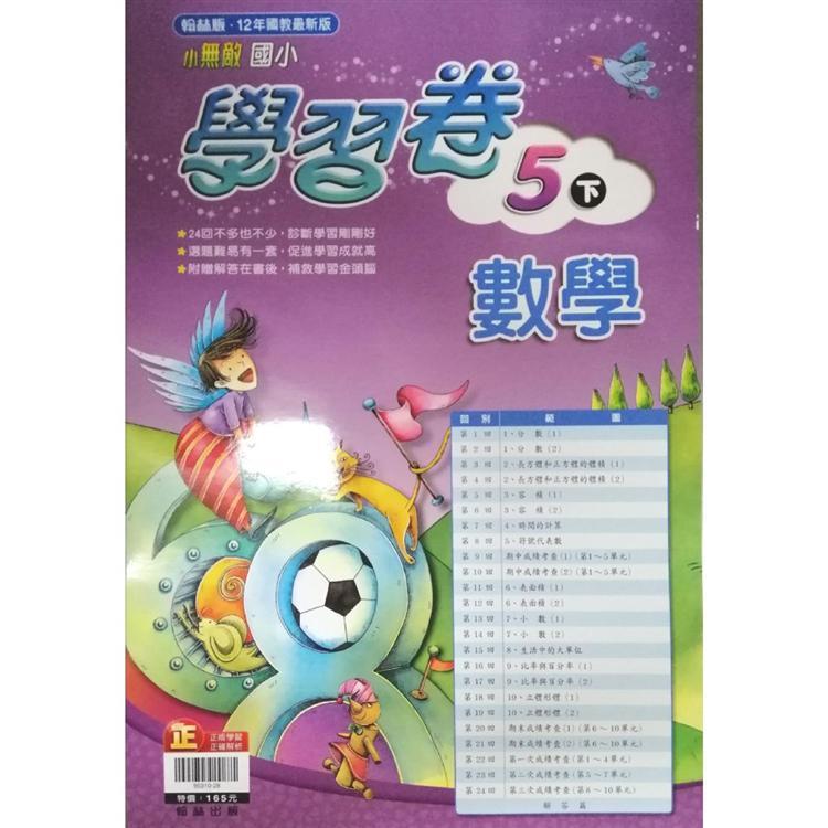 國小翰林小無敵學習卷數學五下(108學年)
