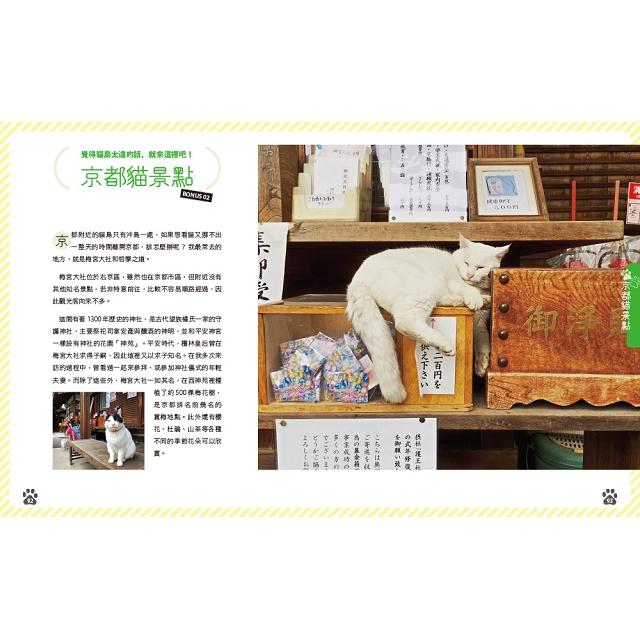 日本貓島旅行:貓咪、兔子有時還有狐狸