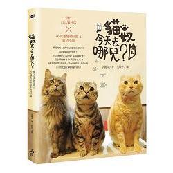 貓奴,今天去哪兒?慢行台北貓村落X26間療癒咖啡館&雜貨小舖