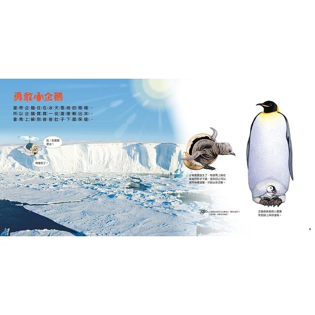 勇敢小企鵝