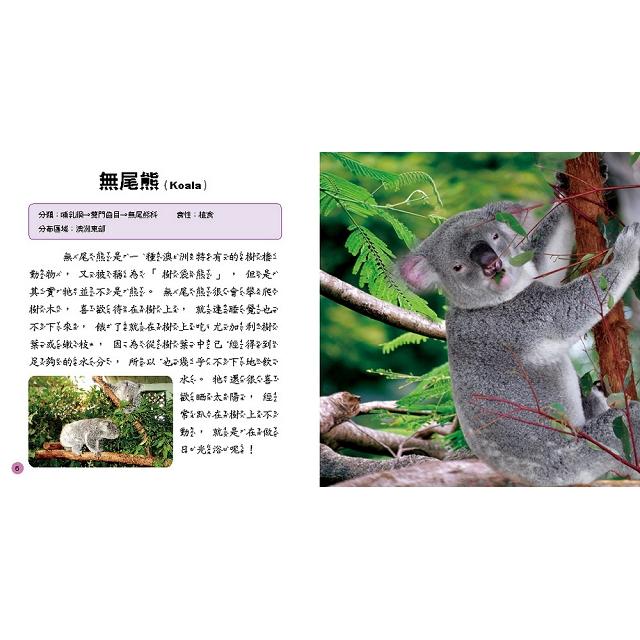 兒童百科:動物小百科(典藏版)