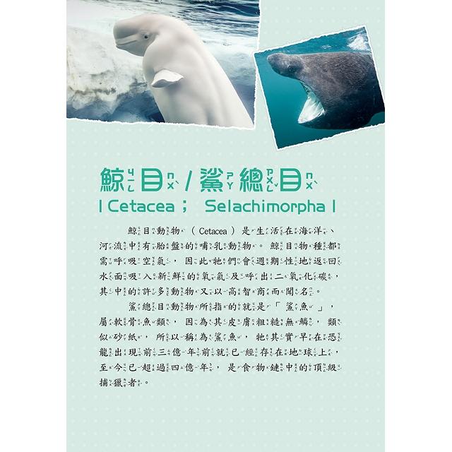 海洋動物圖鑑小百科《脊椎/無脊椎動物》