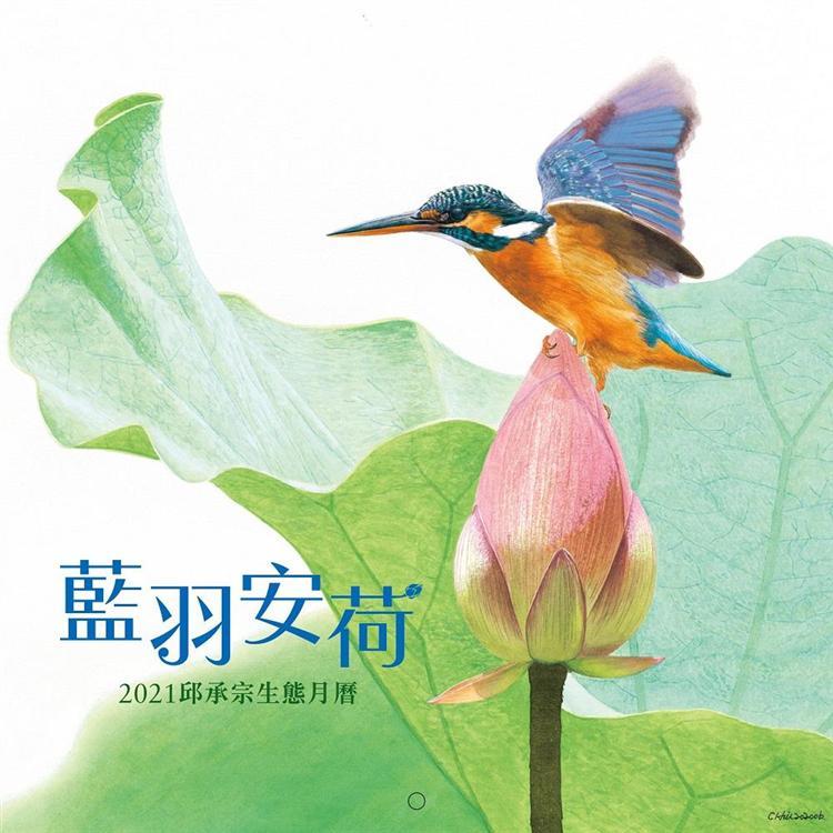 藍羽安荷:2021邱承宗生態月曆