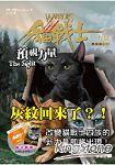 貓戰士三部曲三力量之一:預視力量