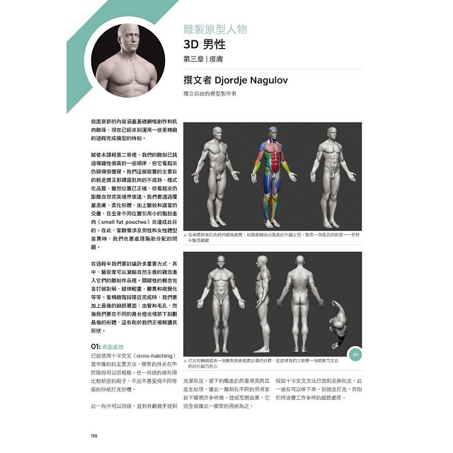 3D藝用解剖學