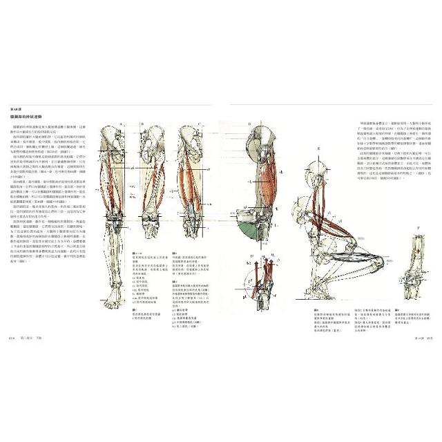 運動中的人體結構:義大利藝術教育最高學府,威尼斯美術學院授課教材,人體藝用解剖創世紀之作