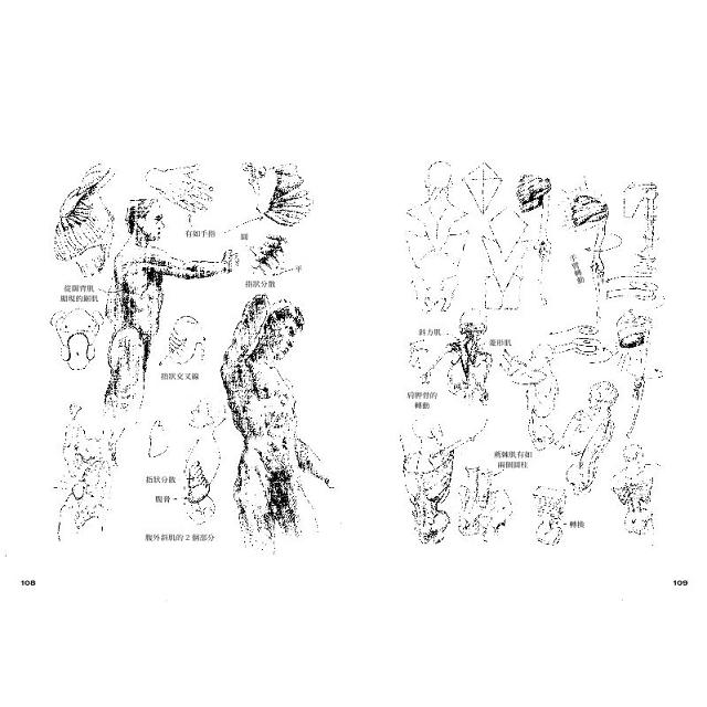 藝用人體解剖地圖:穩坐人體型態研究的經典書籍寶座,長暢37年不墜