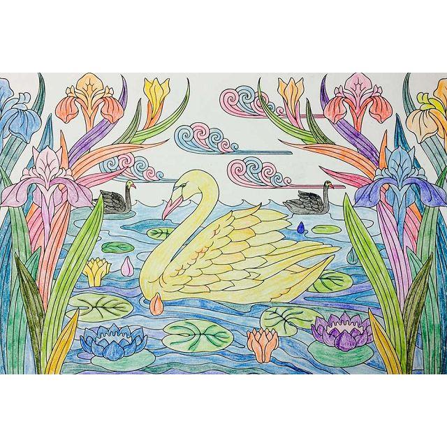 華麗時光:彩繪魔幻動物