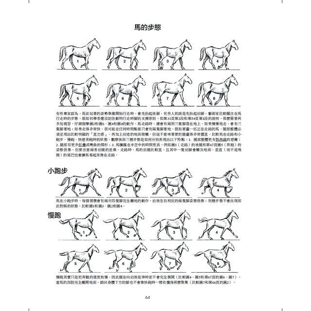 動物素描:享譽半世紀,暢銷全球的經典教程,從觀察、操作、訣竅,到風格應用的完備技法