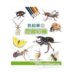 色鉛筆的昆蟲彩繪