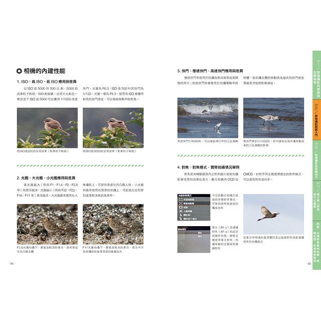野鳥攝影:從器材選購、拍攝技巧到辦一場屬於自己的攝影展