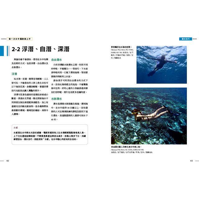 與海龜一起游泳玩自拍,第一次水中攝影就上手
