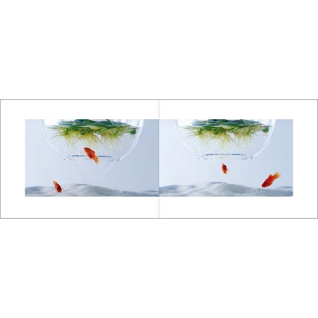 Waterscape—水中風景