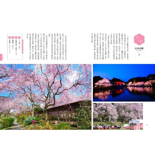 京都日日(上)