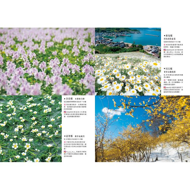 日本絕美花風景:200+日本人才知道的四季賞花祕境