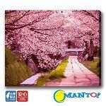 【Manto】DIY數字油畫-京都緋紅散策-40*50