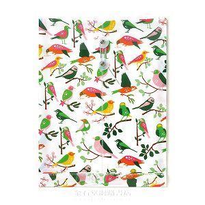 MIDORI多彩信封袋(A4)-小鳥