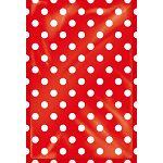 【四季紙品禮品】紙底透明禮物袋(大)-紅點