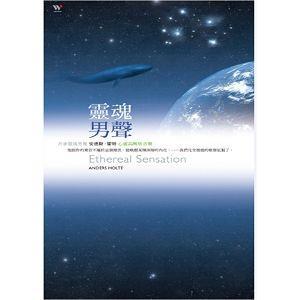 靈魂男聲 (2CD)