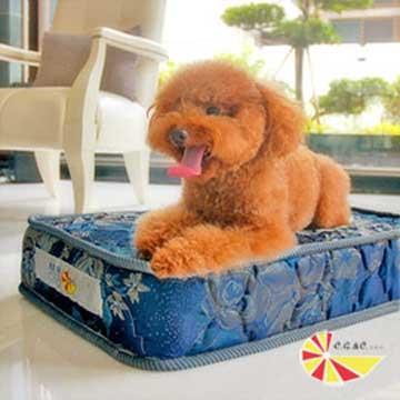 凱蕾絲帝-寵物特大型寵物專用獨立筒彈簧床墊組(60**120**11cm)