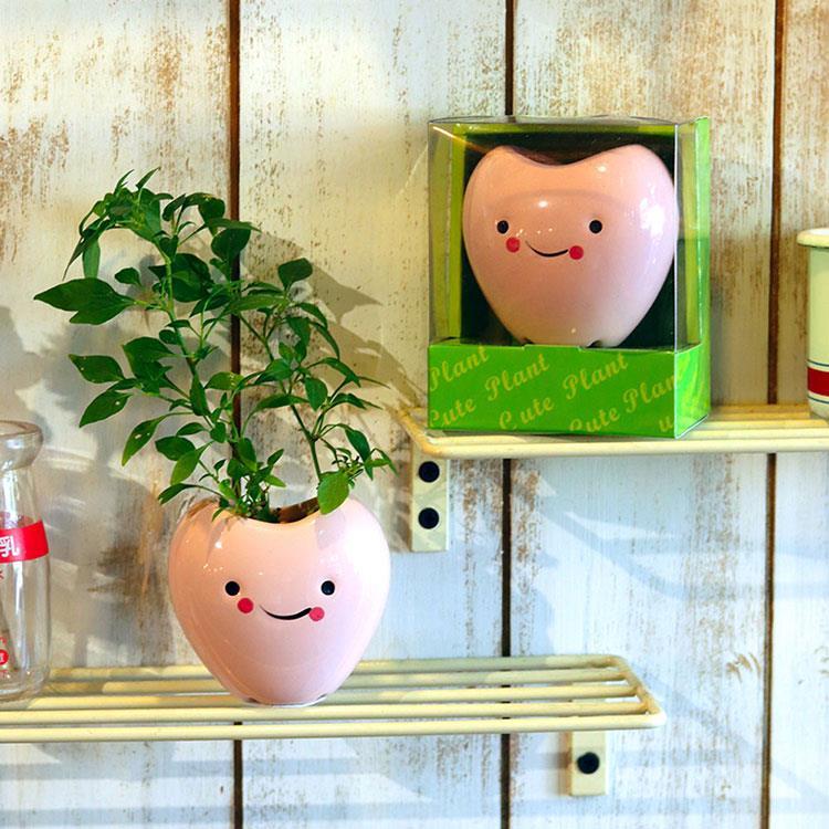 【迎光】Cute plant陶瓷植栽-愛心