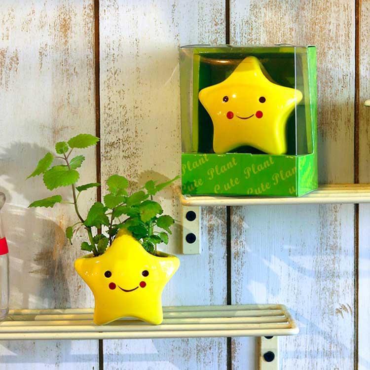【迎光】Cute plant陶瓷植栽-星星