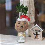 【迎光】耶誕小兔苔球