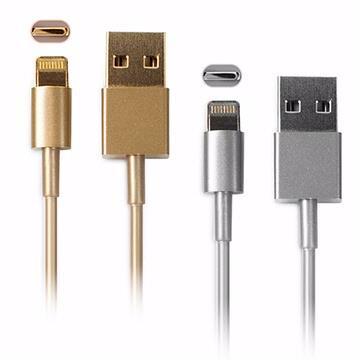 (買一送一)Apple iPhone 5S / iPad mini 金屬色充電傳輸線