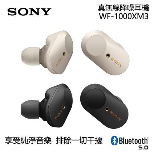 Sony 索尼  真無線入耳式耳機 WF-1000XM3(新品預購)