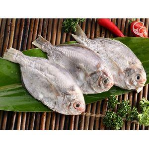 【上野物產】東北角野生肉魚,共15隻(100g~120g/隻)