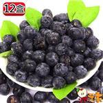 【果之家】 加州空運進口鮮果藍莓12小盒入(125g/盒)
