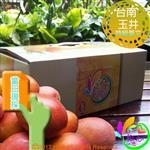 《和之心》特級愛文芒果禮盒(8至12顆5斤)