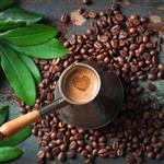 【大隱珈琲】自慢系列 單品咖啡豆 - 半磅裝 x 6入