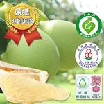 (買10送10)【果之家】嚴選48年榮獲3重認證麻豆文旦10台斤