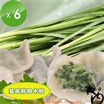【大內】韭菜鮮肉水餃6包(50粒/包)