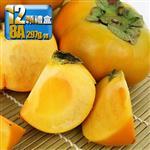 鮮採家 特級摩天嶺高山8A甜柿12入禮盒(單顆7.5-8.4兩)