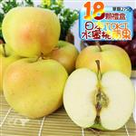 果之家 日本TOKI多汁水蜜桃蘋果16顆入5KG(單顆約310g)
