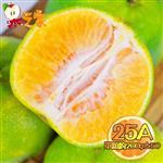 果之家 嘉義當季爆汁酸甜25A綠皮椪柑10台斤