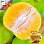 果之家 嘉義當季爆汁酸甜25A綠皮椪柑3台斤