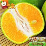 果之家 嚴選台灣特大鮮採香甜爆汁27A綠皮椪柑12顆(單顆約230g±50)