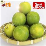 【果之家】古坑老欉鮮採爆汁雞蛋柳丁3台斤(約18-30顆)