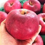 【果之家】日本稀少種大紅榮蘋果XL特級6顆入禮盒(約4.5台斤,單顆為410-480g)