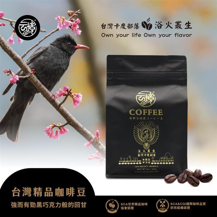 雲境-台灣卡度部落咖啡豆-100%南投埔里種植