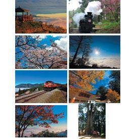 阿里山四季幻彩(2)-8張明信片