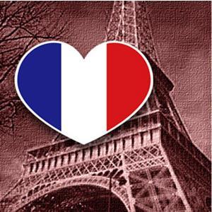 【國旗商品創意館】法國旗愛心形抗UV、防水貼紙2入/France/多國款式可選購