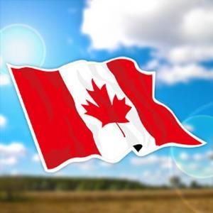 【國旗商品創意館】加拿大國旗飄揚抗UV、防水貼紙2入/Canada/多國款可選購